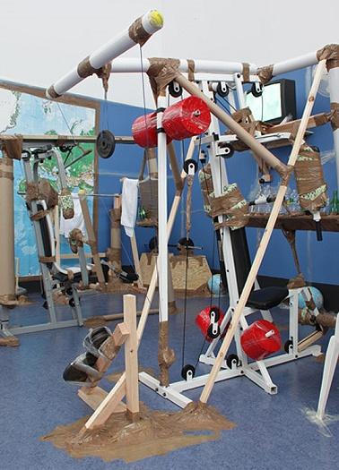 03hirschhorn universal gym 2009